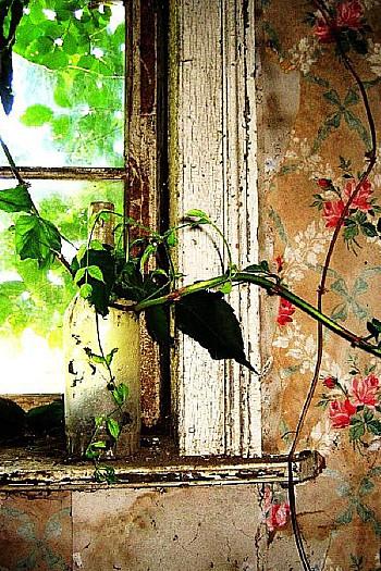 wooninspiratie bloemenbehang
